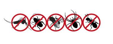 vaposect_doodt_alle_insecten